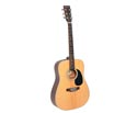 Braidwood Dreadnought Solid Top 02