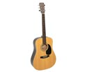 Braidwood Dreadnought Solid Top 03