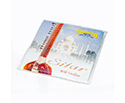 Sitar String Set - 8-str India