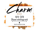 CHARM Double Bass Set RopeCore/Alloy 3/4