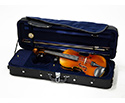 Raggetti RV5 Violin Outfit in TG Lightweight Case - 1/2