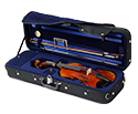 Raggetti RV7AE Setup Violin Package-4/4